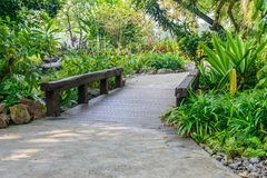 Stone pathway and wooden bridge into garden Royalty Free Stock Photo