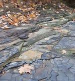 Stone pattern. River rock stone pattern by creek Royalty Free Stock Photo