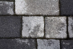 Stone Paved Garden Path Royalty Free Stock Photography