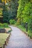 Stone paved road. In forest Stock Image