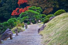 Stone paved road. In forest Stock Photos