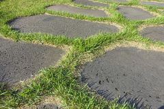 Stone paved road with grass stock photo