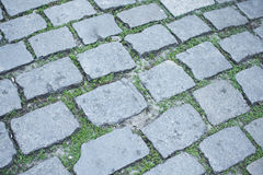 Stone paved street Stock Photography