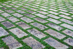 Stone pavement. With green grass. Texture or background Royalty Free Stock Image