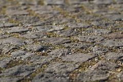 Stone pavement closeup with joints, split and a little bit of gr Royalty Free Stock Photo