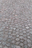 Stone pavement Royalty Free Stock Photos