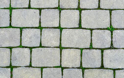 Stone pavement with green grass. Old street road stone pavement with green grass texture royalty free stock photography