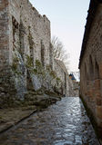 The stone paving on the street and lantern Royalty Free Stock Photography