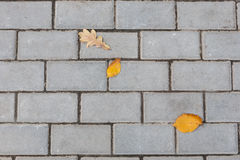 Stone paving texture. Abstract pavement background. Stock Image
