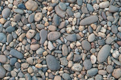 Stone and Pebble Background Stock Image