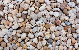 Stone pebbles Royalty Free Stock Images