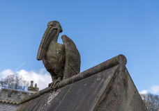 Stone Pelican statue, perched on a stone wall Stock Images