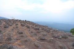Stone in Phu Hin Rong Kla National Park Stock Image