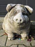 Stone pig  in the garden Stock Photography