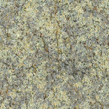 Stone plate surface - seamless natural rough pattern Stock Photography