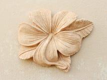 Stone Plumeria craft art design royalty free stock images
