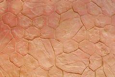 stone podłogi Obraz Stock