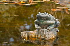 Stone Pond Garden Frog Royalty Free Stock Photo