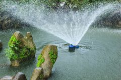 Stone in pond, irrigate Royalty Free Stock Image
