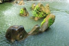 Stone in pond stock image
