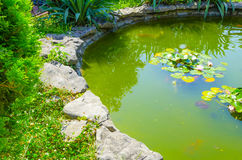 Stone pond. Surrounded by greenery Royalty Free Stock Photo