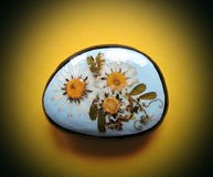 Stone with pressed flowers. Natural stone with pressed wild flowers on yellow background Royalty Free Stock Images