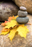 Stone pyramid. With maple leafs Royalty Free Stock Images