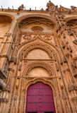 Stone Red Front Door Facade New Salamanca Cathedral Spain Royalty Free Stock Images