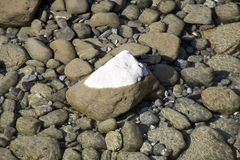 Stone in the river Stock Photos