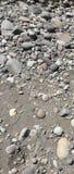 Stone river bed. Grey stones on a river bed taranaki Royalty Free Stock Photography