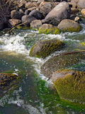 Stone in river flow Royalty Free Stock Images
