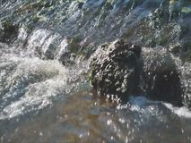 Stone in river flow. stock video
