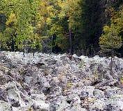 Stone river Stock Image