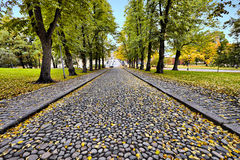 A stone road in the autumn season Royalty Free Stock Image