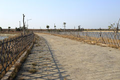 Stone road with bamboo fence in xiaodeng resorts Royalty Free Stock Photos