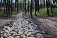 Stone road Stock Image