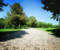 Stone road in green park Royalty Free Stock Photography