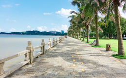 City street sidewalk seaside view. Modern city street sidewalk view and urban scenery. Cityscape of China. Stone road at seaside with balustrade and coconut tree Stock Photography