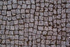 Stone road texture Stock Photos