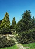 A stone road to the top among lush vegetation. stock photo