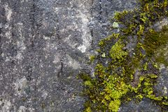 Stone or rock background and texture, natural stone.  Stock Photography