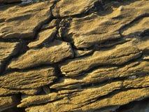 Stone, rock Stock Image