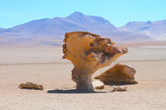 Stone rock formation - Arbol de piedra. Bolivia Stock Photography