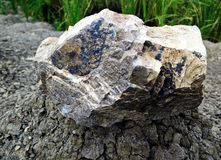 Stone rock from volcanic Royalty Free Stock Images