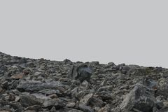Stone cobbles on a gray background. Stock Image