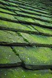 Stone Roof Tiles Stock Image