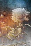 Stone rose royalty free illustration