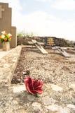 Stone rose on old graveyard Royalty Free Stock Photo