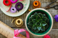 Stone rose, wrap paper roll, set of colorful ribbons and scissors Royalty Free Stock Images