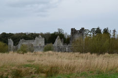 Stone Ruins of Desmond Castle in County Limerick Ireland Royalty Free Stock Image